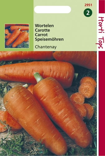 2951 HT Wortelen Chantenay 6 gram