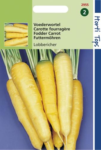 2955 HT Carotte fourragère jaune de Doubs  6 gramme