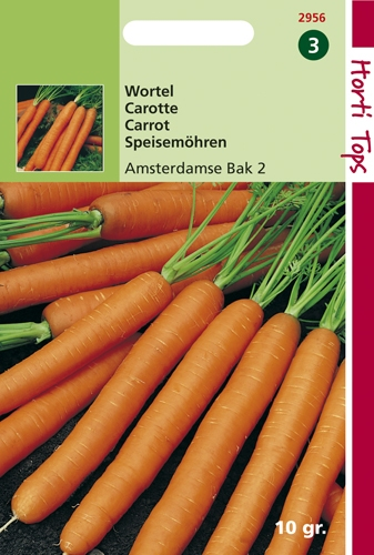 2956 HT Carotte Amsterdam 2   10 gramme