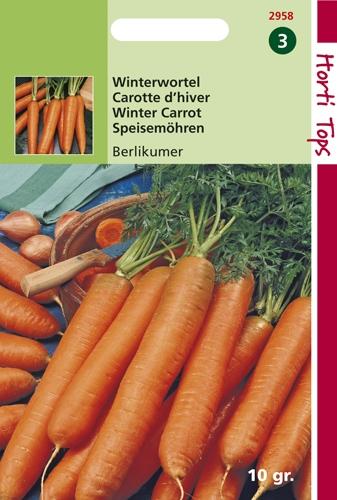 2958 HT Carotte d'hiver Berlicum  10 gramme