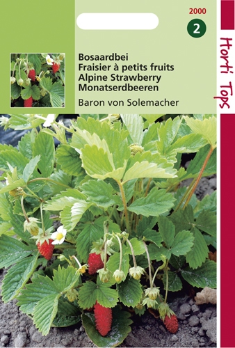 2000 HT Aardbeien Baron von Solemacher 0,25 gram