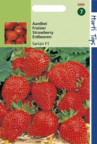 2004 HT Aardbeien Sarian F1 0,5 gram