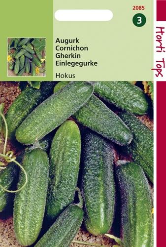2085 HT Cornichon Hokus  2 gramme