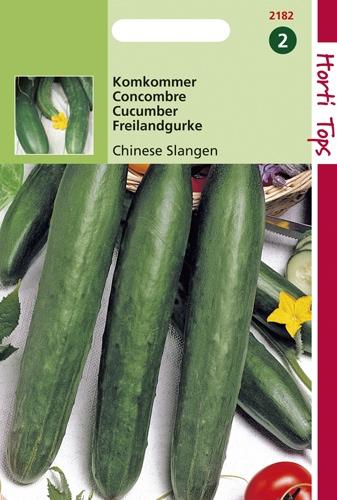 2182 HT Concombre vert long de Chine  2 gramme
