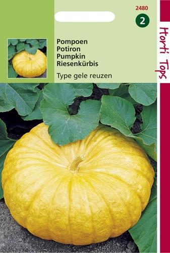 2480 HT Pompoenen Type Gele Reuzen 4 gram