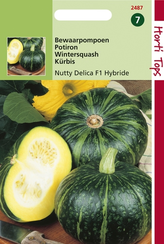 2487 HT Potiron Nutty Delica F1 Hybride  1,5 gramme