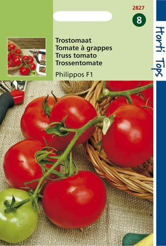 2827 HT Tomate à grappes Serrat F1  0,2 gramme