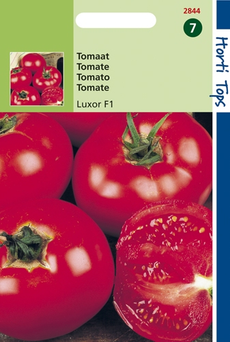 2844 HT Tomate Luxor F1  0,2 gramme