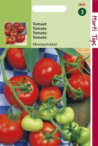 2845 HT Tomaten Moneymaker 2 gram