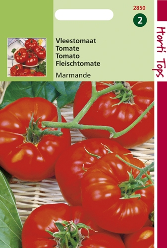 2850  HT Tomaten Marmande (Vleestomaat) 2 gram