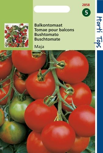 2858 HT Tomaten Maja (Balkontomaat) 0,75 gram