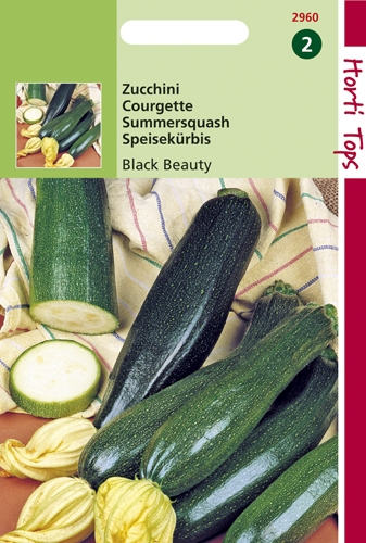 2960 HT Courgette Black Beauty  5 gramme