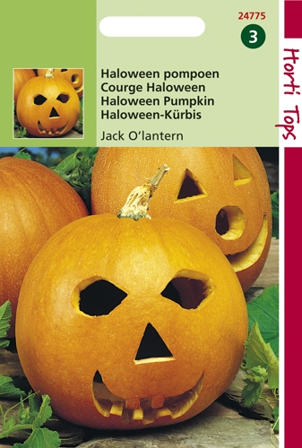 24775 HT Courge Halloween Jack O'lantern  2 gramme