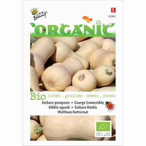 92983 BO Courge Comestible Waltham Butternut  2 gramme