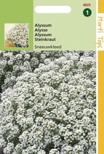 4025 HT Alyssum Sneeuwkleed 0,5 gram