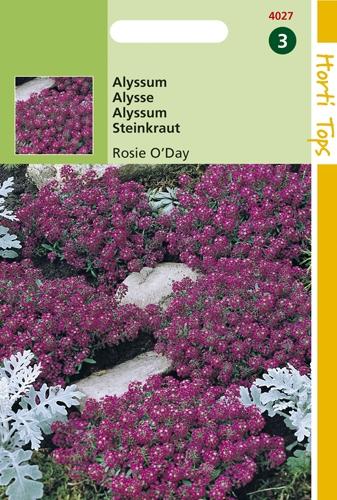 4027 HT Alysse Rosie O'Day  0,5 gramme