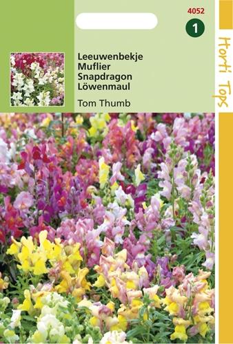 4052 HT Mufler Tom Thumb  0,5 gramme