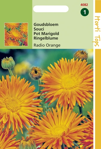 4082 HT Goudsbloem Radio Orange 2 gram