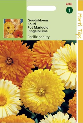 4085 HT Goudsbloem Pacific beauty 2 gram
