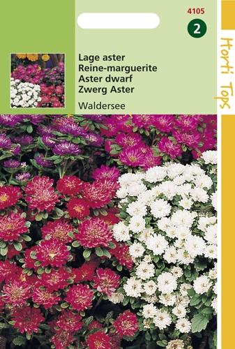 4105 HT Lage aster Waldersee 0,4 gram