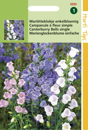 5035 HTCampanula á fleur simple  0,25 gramme