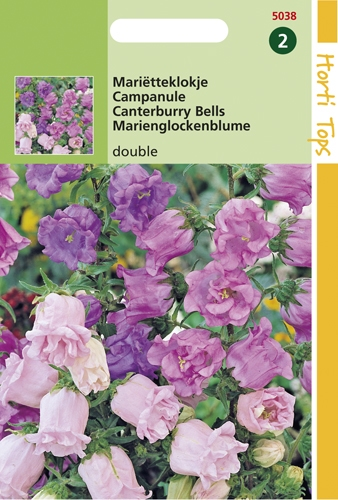 5038 HT Campanule à fleur double  0,4 gramme