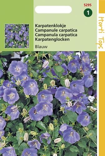5295 HT Karpatenklokje blauw  0,25 gram
