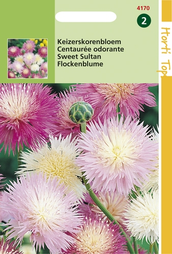 4170 HT Centaurée odorante  1 gramme