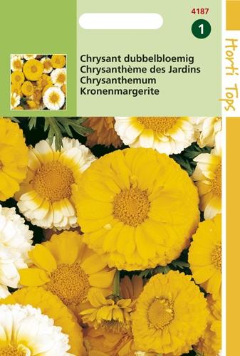 4187 HT Chrysant dubbelbloemig 1,5 gram