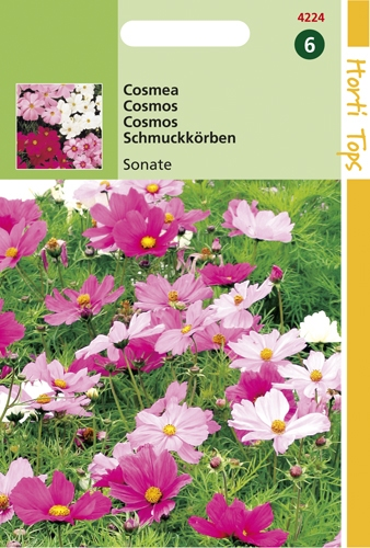 4224 HT Cosmos Sonate  0,6 gramme