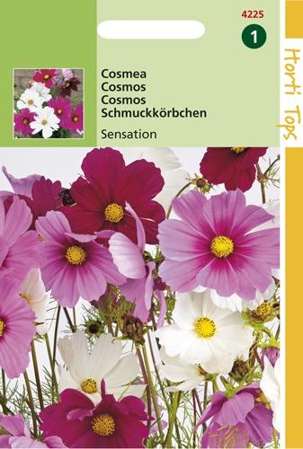 4225 HT Cosmos Sensation 1 gram
