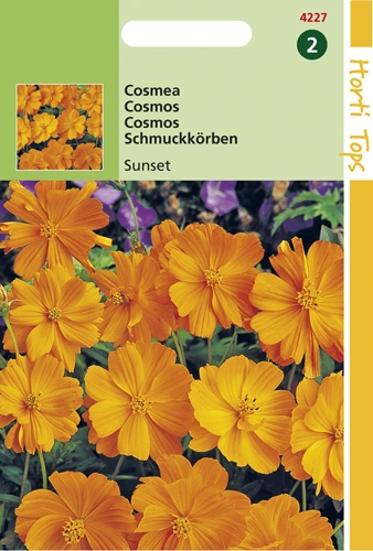 4227 HT Cosmos Sunset  1 gramme
