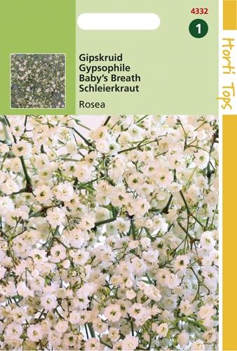 4332 HT Gipskruid Rosea 1 gram