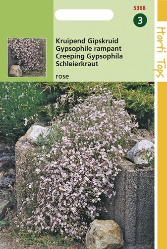 5368 HT Kruipend Gipskruid rose 0,25 gram