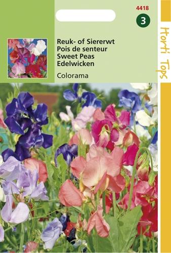 4418 HT Reuk- of Siererwt Colorama 5 gram