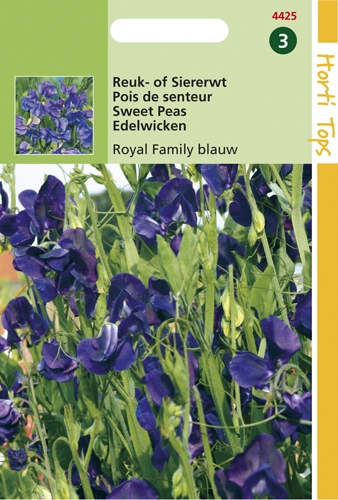4425 HT Pois de senteur Royal Family bleu  4 grammes