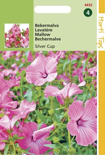 4432 HT Lavatère Silver Cup  1,5 grammes