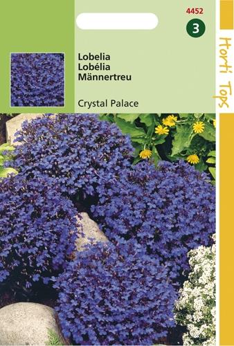 4452 HT Lobelia Crystal Palace 0,25 gram