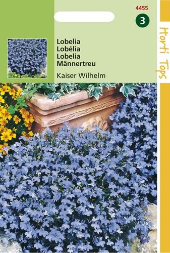 4455 HT Lobélia Kaiser Wilhelm  0,25 gramme
