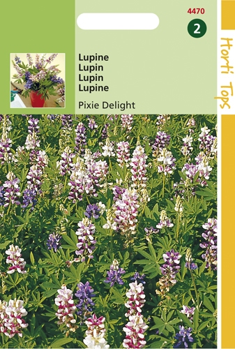 4470 HT Lupin Pixie Delight  2 grammes