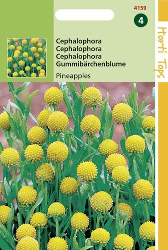 4159 HT Cephalophora Pineappels 0,1 gram