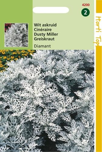 4200 HT Wit Askruid Diamant 0,3 gram