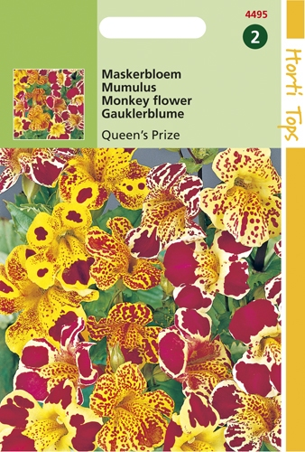 4495 HT Maskerbloem Queen's Prize 0,2 gram