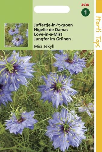 4538 HT Juffertje-in-'t- groen Miss Jekyll 1,5 gram