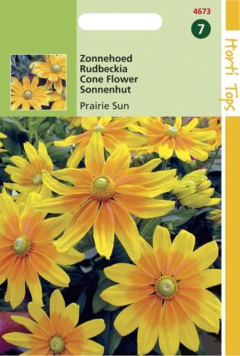 4673 HT Rudbeckia Prairie Sun  45 graines