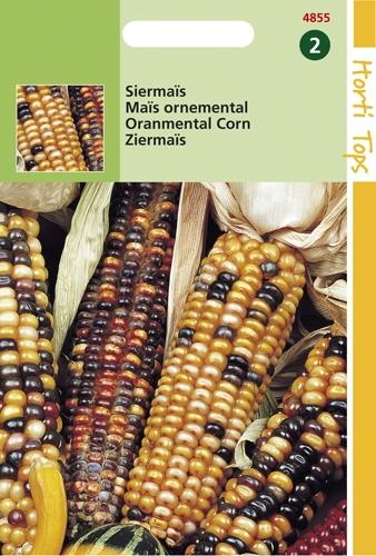 4855 HT Maïs ornemental  7 grammes