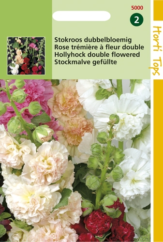 5000 HT Rose trémière à fleur double  0,5 gramme