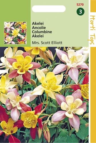 5270 HT Akelei Mrs Scott Elliott 0,5 gram