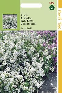 5275 HT Arabis Snowball 0,25 gram