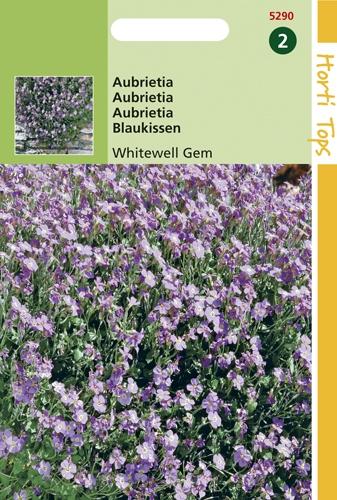 5290 HT Aubrietia 0,2 gram